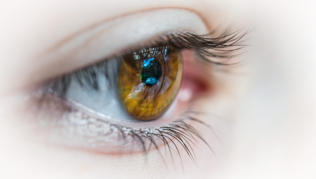 Zdjęcie oka w dużym przybliżeniu