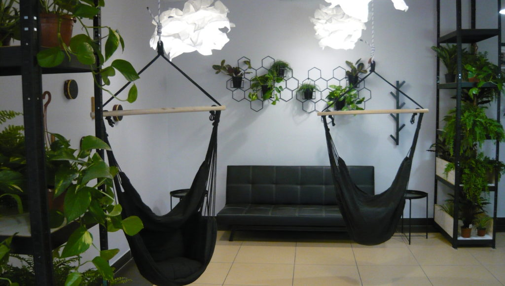 Świetlica sensoryczna w korytarzu na pierwszym piętrze przy ul. Konwiktorskiej 7. Dwa regały wypełnione roślinami, dwa hamaki, kanapa i kwietnik ścienny.