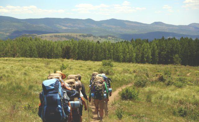 Osoby z plecakami wędrują połoniną, w tle widać góry