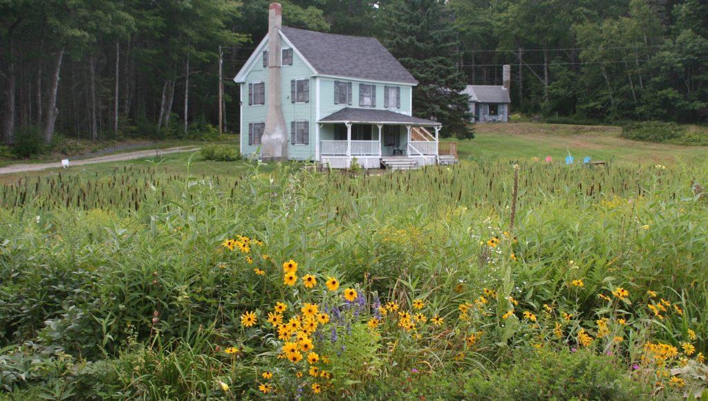 Duży piętrowy dom, przed nim łąka z kwiatami, za nim las